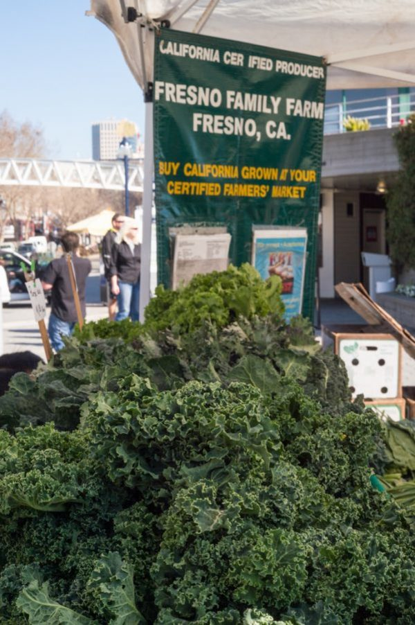 The Central Valley Feeds the Country and the World – The Rampage Online