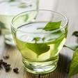 Green Tea Cuts Obesity & Health Risks in Mice
