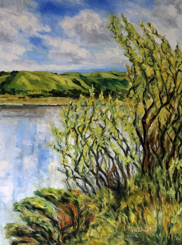 Willows Early Spring by the Quarry Lakes, Fremont California  by Terrill Welch