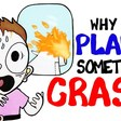 Why Planes Sometimes Crash