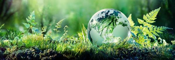 UN climate change body turns 25