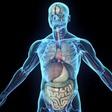 Hebben we straks allemaal een digital twin van ons lichaam?