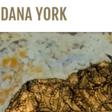Nouvelle technique de peinture par Dana York
