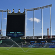 The Kansas City Royals Partner With StellarAlgo To Learn More About Their Fans