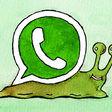 Zo pakte WhatsApp viraliteit aan