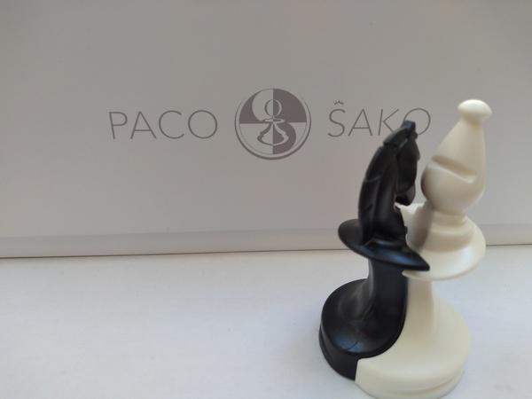 Schaakspel met een twist en een visie: Paco Sako.