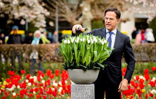Premier Rutte doopt een nieuwe tulp