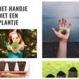 Het handje met een plantje