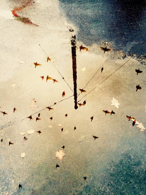 [Featured] Surface and Consciousness // Joshua Sariñana