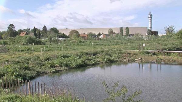 Le projet d'aménagement des bassins de Frasnes prend forme - Tweede leven voor Frasnes-bekken