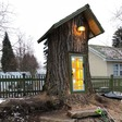This woman turned her tree stump into a Little Free Library fit for magical elves. It went viral - The Washington Post