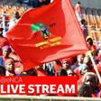 LIVESTREAM: Malema speaking at the Soweto EFF rally despite his personal loss