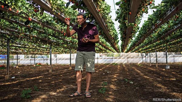 Wie Israel die Landwirtschaft mit Technik revolutioniert