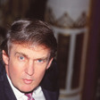 There Is No Way Donald Trump Actually Lost $1.17 Billion - New York Magazine