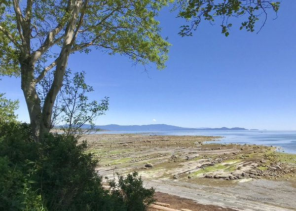 Sandpiper Beach on Hornby Island
