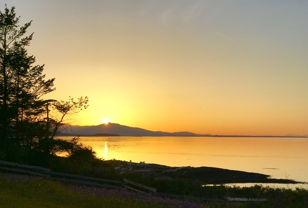 Sunset at Grassy Point on Hornby Island