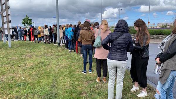 De weg naar Happinez gaat niet over rozen (drama-filmpjes) | De Orkaan