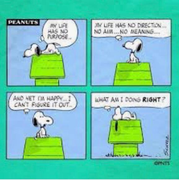 uit Peanuts by Charles M. Schulz