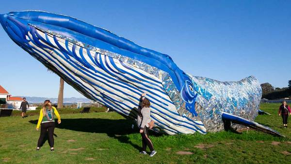 Life-size whale made of recycled plastic to 'educate people about ocean pollution' | Guinness World Records