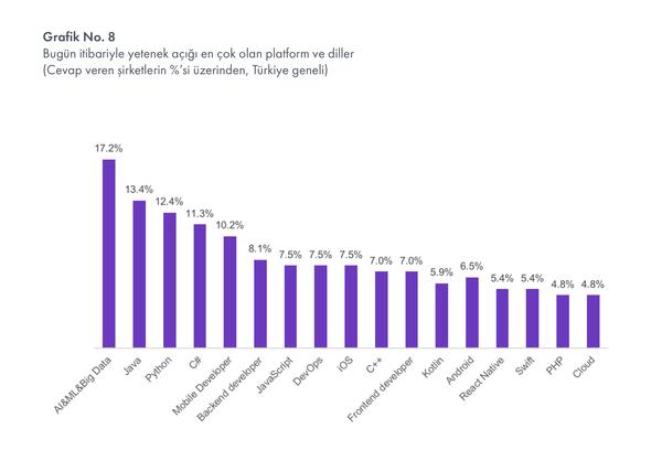 Türkiye'de şirketler tarafından en çok yetenek açığı olduğu söylenen programlama dilleri/teknolojiler