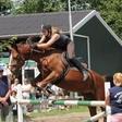 De Ripse Paardendagen
