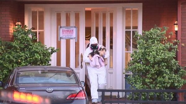 136 dogs living in deplorable conditions removed from California home, police say - ABC News