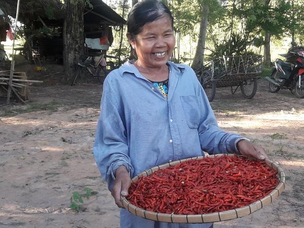 Bäuerin in Isaan, Thailand.
