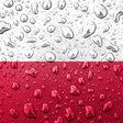 Czesław BIELECKI: Wybór racji stanu   Wszystko co najważniejsze