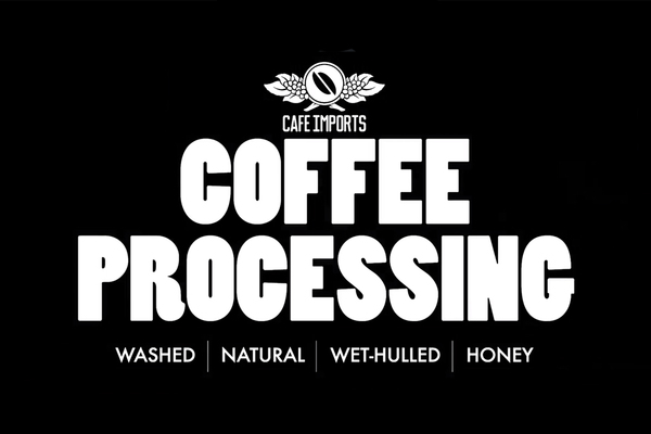 "Dive Into Cafe Imports' New ""Coffee Processing"" Video Series"