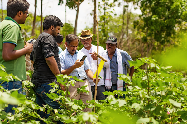 Rajesh Jain taking a photo of a pest trap. (Photo/caption: Google.org)
