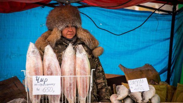 Klimakrise: Siberien könnte deutlich großflächiger bewohnbar werden