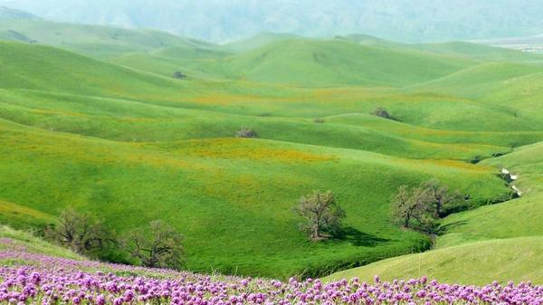 How to Access Tejon Ranch, California's Largest Private Parcel   KCET