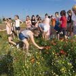 Leerlingen basisschool laten vlinders los in de berm die zij 'maakten'