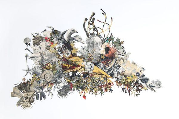 Barbara Wildenboer's stunning art