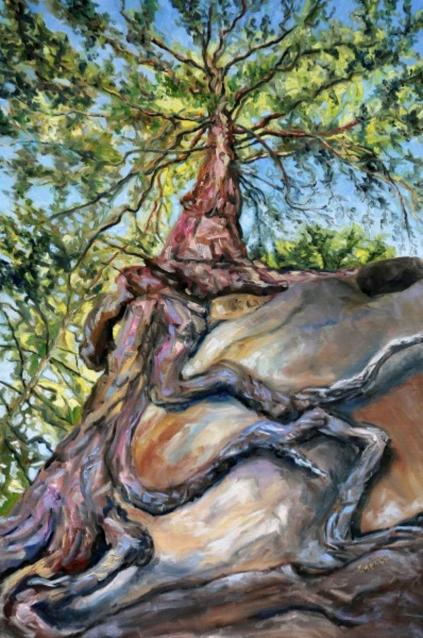 Standing below the old fir at Tribune Bay by Terrill | Artwork Archive