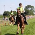 Horseboarding Showteam op 50e Stompwijkse Paardendagen