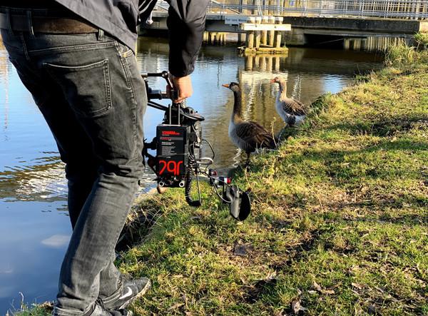 BlueWalks : BlueWalks : promenades et drones le Parc bleu