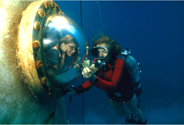 1970, Sylvia Earle and a collegue of Tektite II, the first female underwater colony 💪🏼 💪🏼