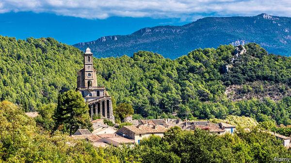 Europas Wälder wachsen wieder