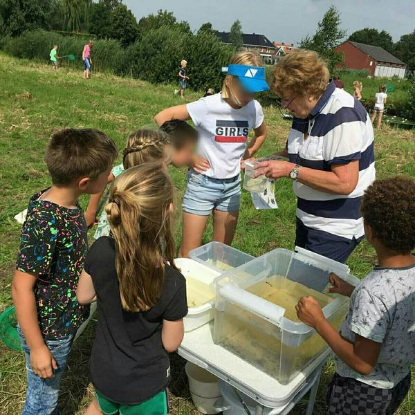 Slootdiertjes-excursie basisschool De Kiem