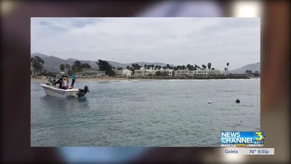Shark tracking equipment floating in Central Coast waters - KEYT