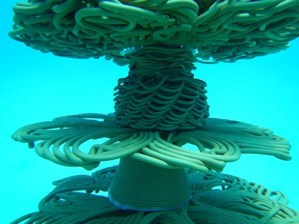 3D printed coral reefs - in case your makerspace is out of ideas
