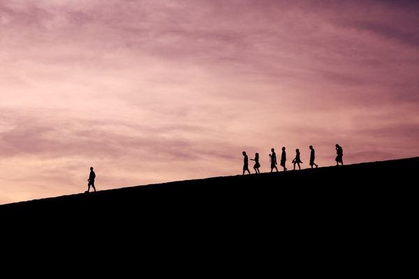 Make them follow you. Photo by Jehyun Sung.