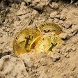 De koers van de Bitcoin? Wie het weet mag het zeggen.... - WANT