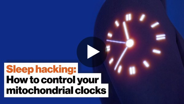 Sleep hacking: How to control your mitochondrial clocks | Dave Asprey
