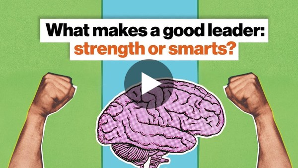 What makes a good leader: strength or smarts? | Nicholas Christakis