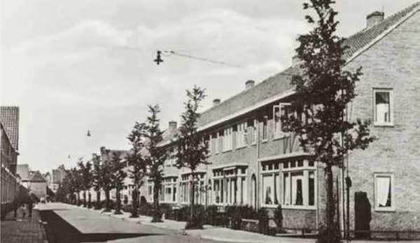 Sociale Woningbouwwijken: Bomenbuurt (de Uithoek) | De Orkaan