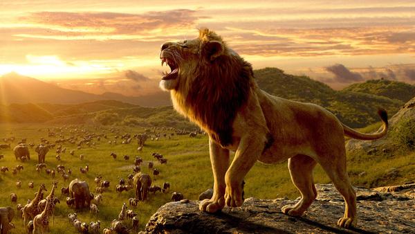 Disney verslaat zichzelf wederom: The Lion King breekt Frozen - WANT