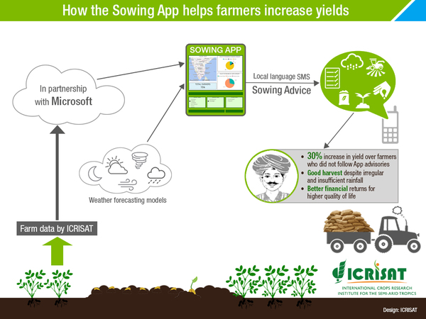 Infographic explaining the sowing app. (ICRISAT)