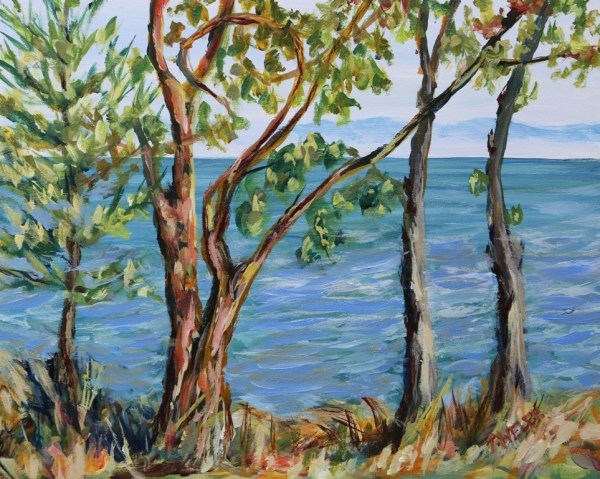 Through the Trees Isabella Point by Terrill Welch | Artwork Archive